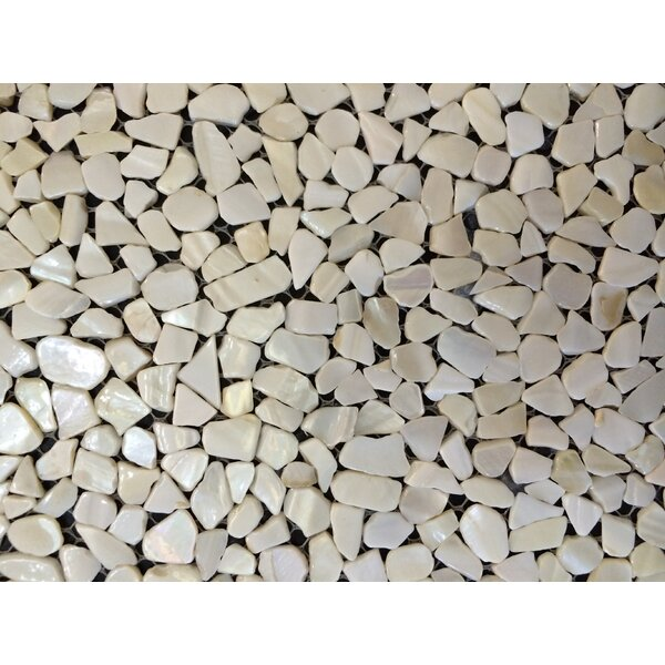 Mesh Mounted Random Sized Authentic Polished Seashell Mosaic Tile in White by Matrix-Z