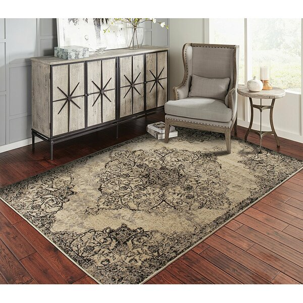 Spivey Black/Beige Indoor/Outdoor Area Rug by World Menagerie