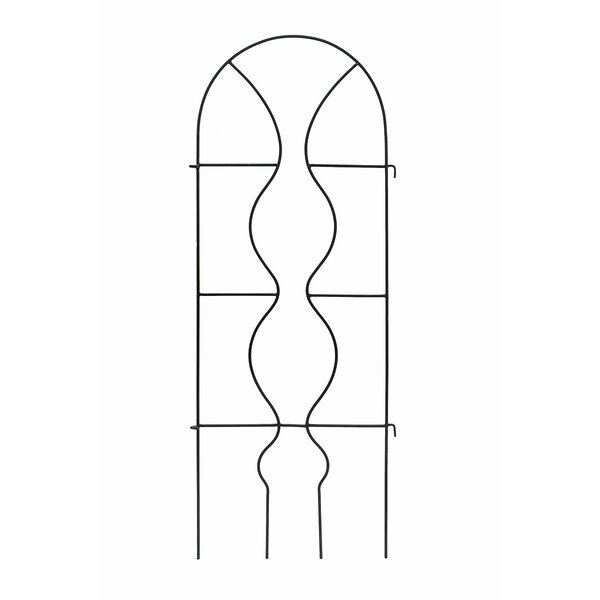 Orangery Iron Arched Trellis by ACHLA