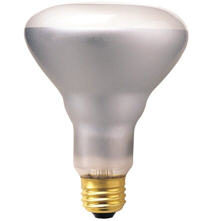 65W 120-Volt (2700K) Incandescent Light Bulb (Set of 14) by Bulbrite Industries