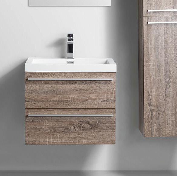 Bolivia 24 Single Bathroom Vanity Set by Foundry Select