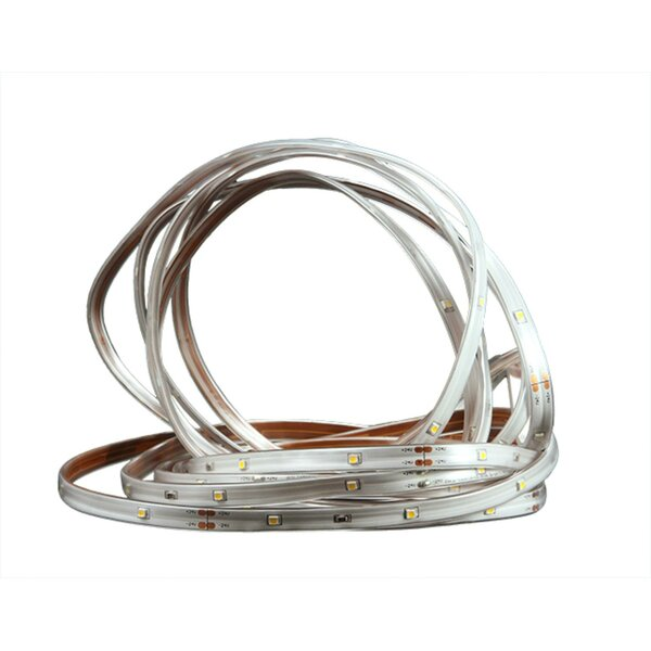 Indoor/Outdoor Christmas Linear Tape Light by Northlight Seasonal