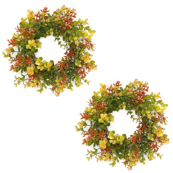 12 Eucalyptus Wreath (Set of 2) by Bay Isle Home