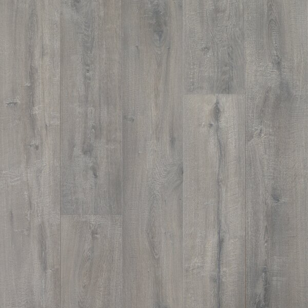 Colossia 9 x 80 x 10mm Oak Laminate Flooring in Roseburg by Quick-Step
