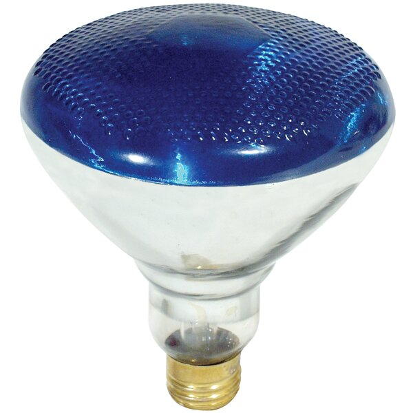 100W Blue 120-Volt Incandescent Light Bulb by FeitElectric