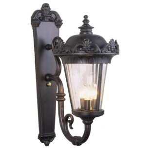 Find Petrey 3-Light Outdoor Sconce By Alcott Hill