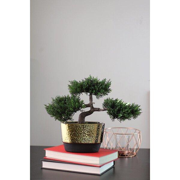 Decorative Artificial Desktop Japanese Bonsai Tree in Pot by Bloomsbury Market