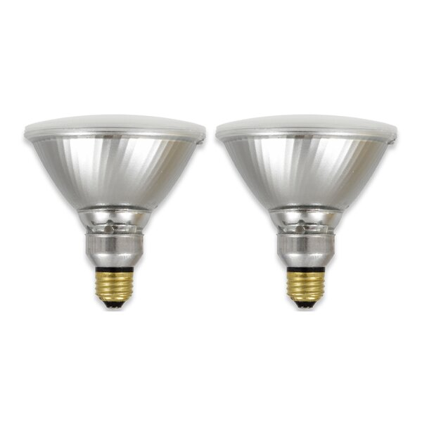 E26 LED Floodlight Light Bulb (Set of 2) by Sylvania