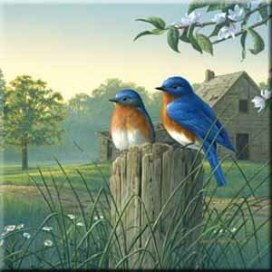 Tuftop Country Morning Bluebirds Trivet by McGowan