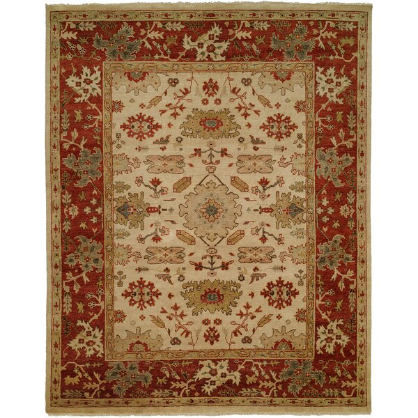 Hidd Hand-Knotted Ivory/Red Area Rug