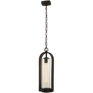 Reviews Mauldin 1-Light Outdoor Hanging Lantern By Gracie Oaks