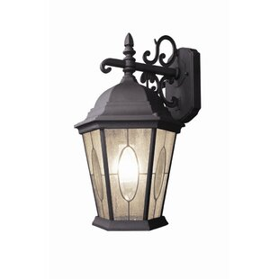 Purchase Basic 1-Light Outdoor Wall Lantern By Woodbridge Lighting