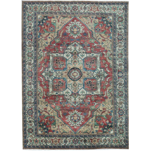 Roughly 5 X 7 Area Rug A Few Spots But Not Stains Spraying With The Hose Would Probably Take Care Of It Pick Up Only