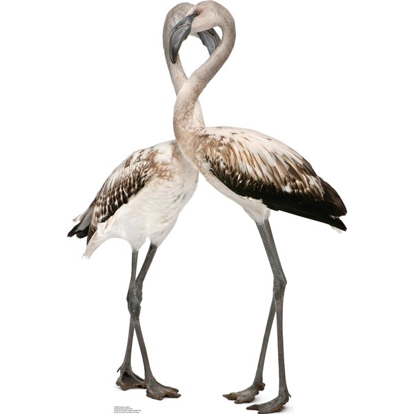 Flamingos - Love Birds Cardboard Stand-Up by Advanced Graphics