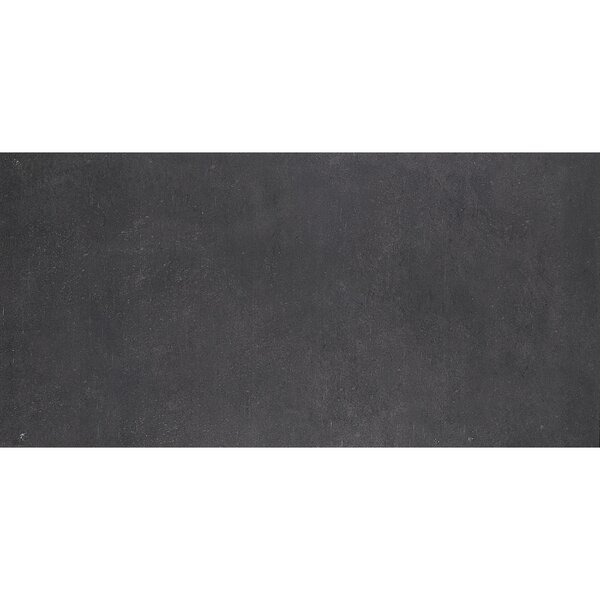 Fairfield 12 x 24 Porcelain Field Tile in Charcoal by Itona Tile
