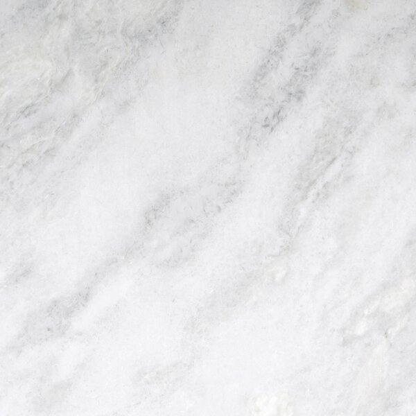 Marble 18 x 18 Tile in Kalta Bianco by Emser Tile