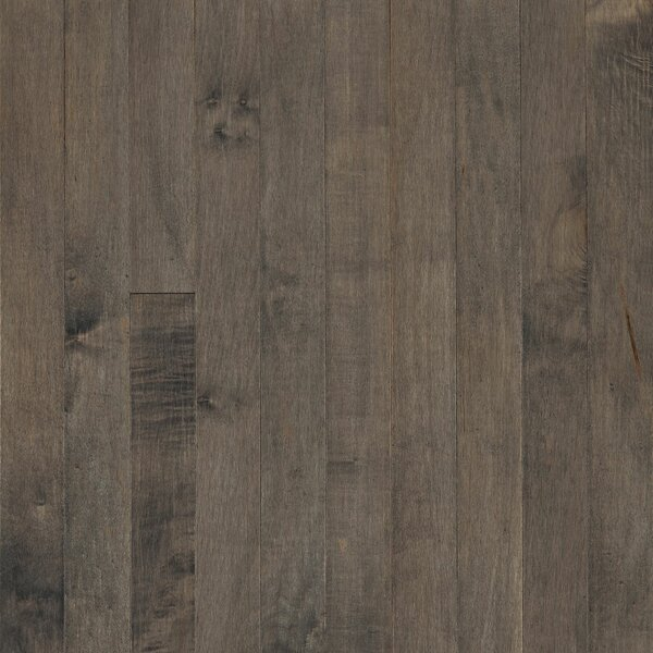Prime Harvest 5 Solid Maple Hardwood Flooring in Canyon Gray by Armstrong Flooring