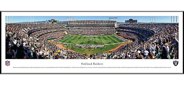 NFL 50 Yard Line Standard Frame Panorama by Blakeway Worldwide Panoramas, Inc