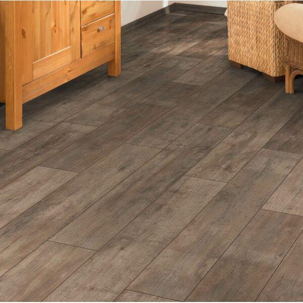 Torre 9 x 48 x 8mm Oak Laminate Flooring in Brown by Branton Flooring Collection
