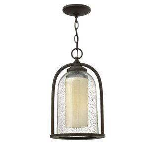 Savings Ardean 1-Light Outdoor Pendant By Darby Home Co