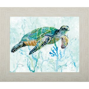 'Swimming Turtle'  Framed Print by Pictures and Mirrors