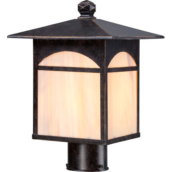 Dissinger Outdoor 1-Light Lantern Head by Loon Peak
