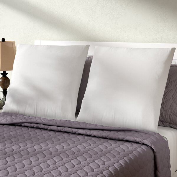 Premium Euro Pillow (Set of 2) by Alwyn Home| @ $70.00