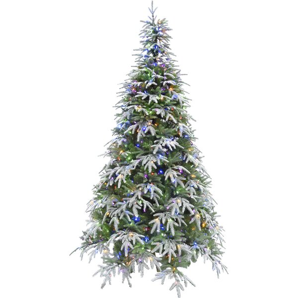 Hunter Green/Snow Fir Trees Artificial Christmas Tree with 500 with Colored and White LED String Lights by The Holiday Aisle