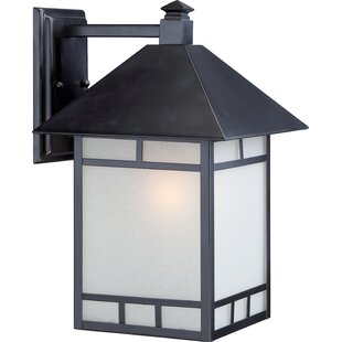 Oralia 1-Light Outdoor Wall Lantern