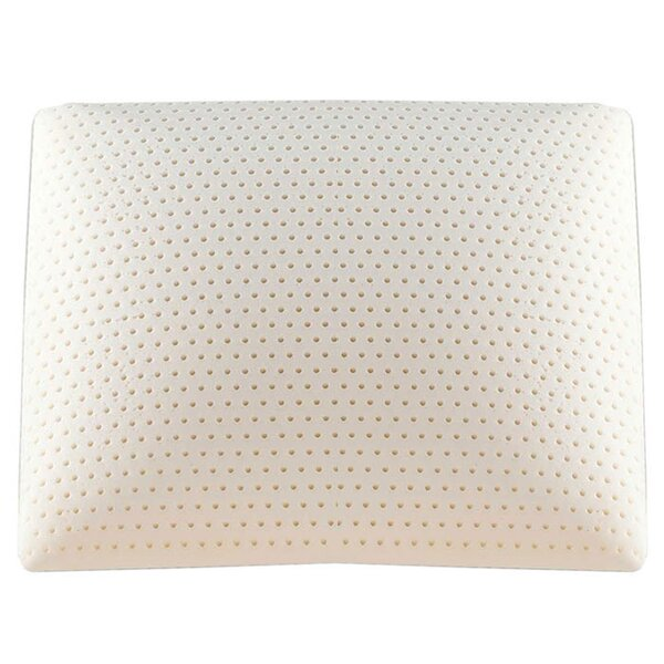 Beautyrest Latex Pillow by Simmons Beautyrest