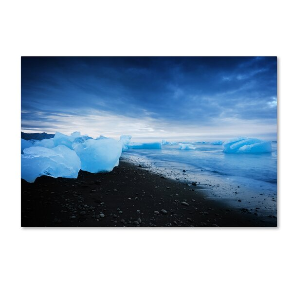 Blue Sugar by Philippe Sainte-Laudy Photographic Print on Wrapped Canvas by Trademark Fine Art