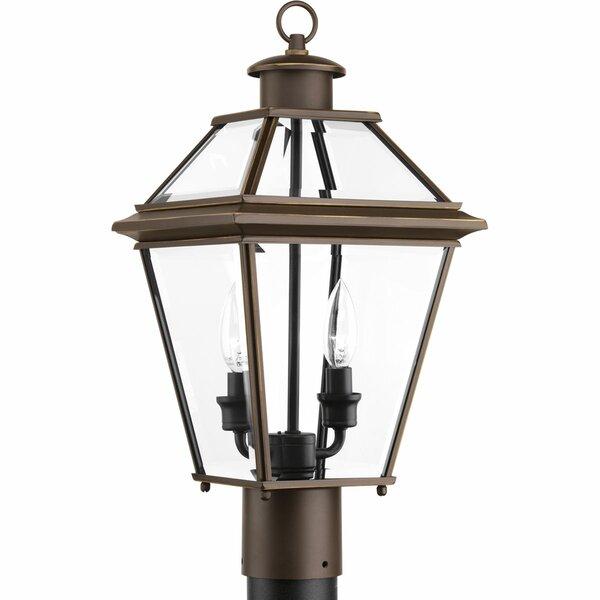 Gunnora 2-Light Lantern Head by Darby Home Co