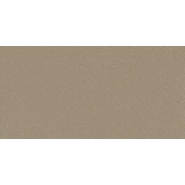 Element 12 x 24 Porcelain Field Tile in Matte Latte by Walkon Tile