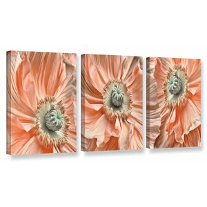 'Poppyscape' by Cora Niele 3 Piece Photographic Print on Wrapped Canvas Set by ArtWall