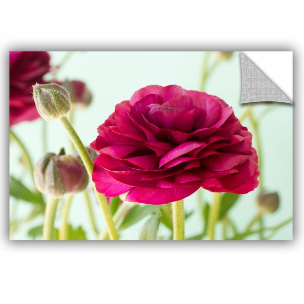 Judy Stalus Blooming Wall Decal by ArtWall