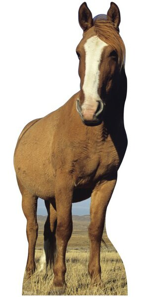 Animals Horse Cardboard Stand-Up by Advanced Graphics