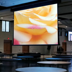 Paragon/Series V White Electric Projection Screen Draper