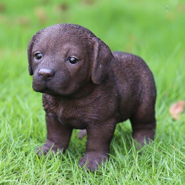 Standing Labrador Puppy Statue by Hi-Line Gift Ltd.