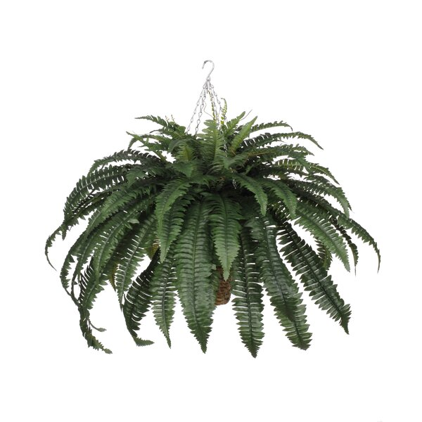 Artificial Fern Hanging Plant in Square Basket by House of Silk Flowers Inc.
