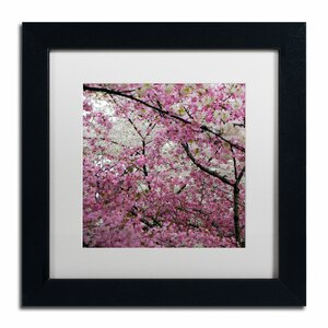 'Cherry Blossoms 2014-3' by CATeyes Framed Photographic Print by Trademark Fine Art
