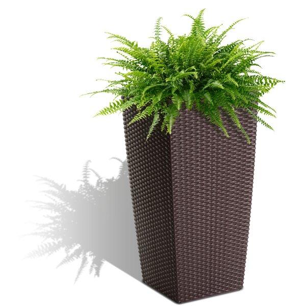 Byrum Self Watering Plastic Pot Planter by Wrought Studio