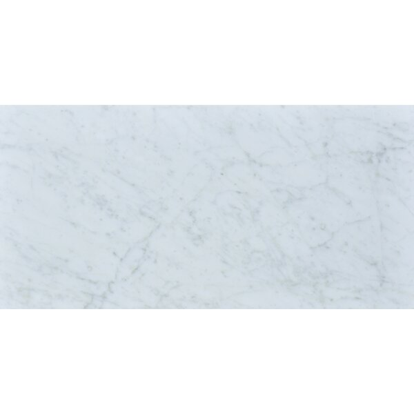 Carrara 12 x 24 Honed Marble Field Tile in White by The Bella Collection