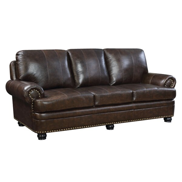Alamosa Transitional Leather Sofa By Hokku Designs