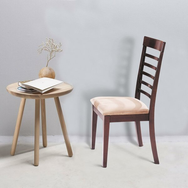 Risley Dining Chair (Set of 2) by Canora Grey