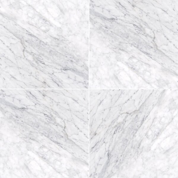 Carrara 18 x 18 Marble Field Tile in Gray