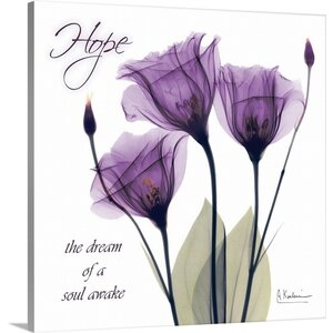 Gentian Hope X-Ray by Albert Koetsier Photographic Print on Canvas by Great Big Canvas