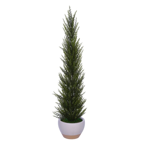Artificial Desktop Cedar Topiary in Pot by George Oliver