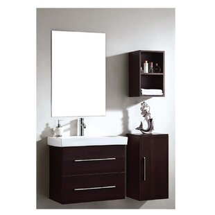 Where buy  Brizendine 28 Wall-Mounted Single Bathroom Vanity Set with Mirror By Wade Logan