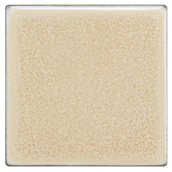Essentia 4 x 4 Porcelain Field Tile in Vanilla by EliteTile