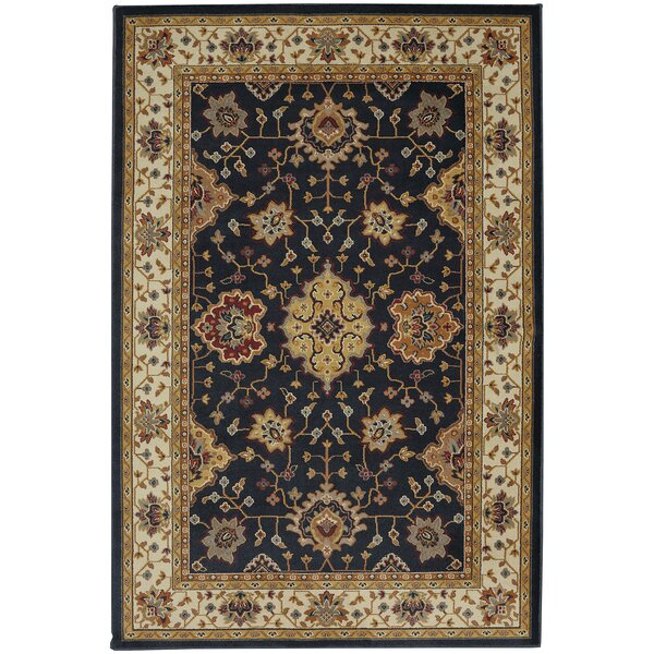Brookes Black Area Rug by Darby Home Co